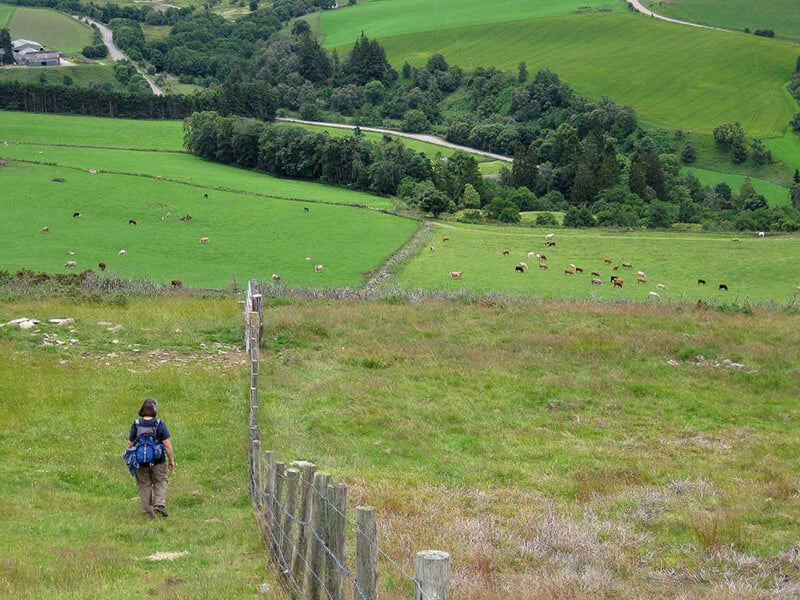 Person walking on a trail of Speyside Way